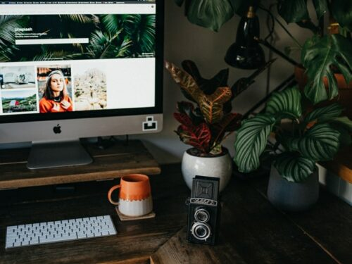 This is a photo of an at-home work setting with a wooden desk, large monitor, separate keyboard, a camera, and pretty, healthy plants sitting nearby.