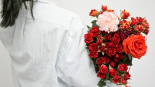 This is a photo taken from behind a person who is holding a beautiful bouquet of pink and red roses and carnations.